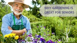 Great tips to help seniors stay active with gardening.
