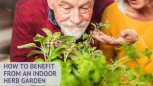 You can begin your own indoor herb garden today!