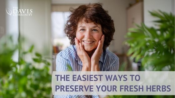 Here are some ways to preserve herbs from your garden